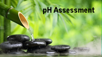 PH-assessment