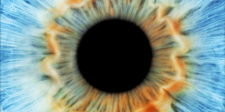 IHN eye for course website
