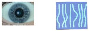 eyes-001